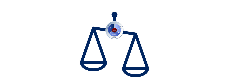 Maintaining Organizational Balance